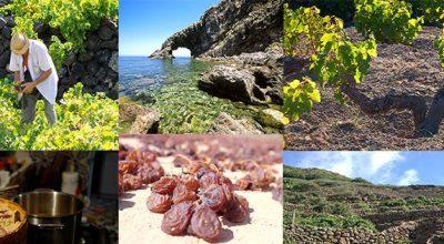 Passitaly a Pantelleria