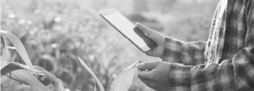"""Avviso Pubblico: """"Disponibilità alla sperimentazione del servizio di rilevazione dei parametri meteo per l'analisi, il monitoraggio e l'intervento sostenibile in agricoltura – Proposta ELAISIAN"""""""